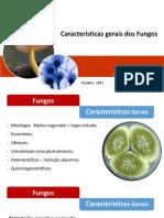 Características Gerais Dos Fungos