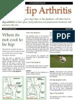 Dog Hip Arthritis PDF
