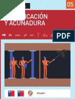 7.fortificacion-acunadura.pdf