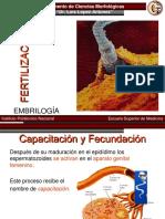 10.-fertilización