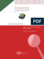 4_Indicador_desempeno.pdf