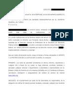 AMPARO ACTUAL.pdf