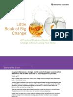 Little Book of Big Change