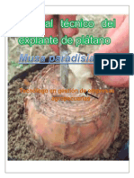 Manual Tecnico de Explante de Platan 1