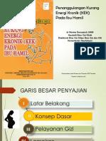 BUKU PEDOMAN PENANGGULANGAN IBU HAMIL KEK.pdf