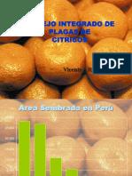 MIP-citricos