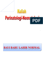Bayi Lahir Normal.pptx