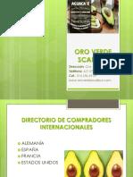 Contacto y Reconocimiento de Clientes (Actividad 1)