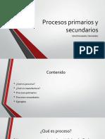 Procesos Primarios y Secundarios