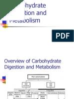 1 สอน Carbohydrate Digestion