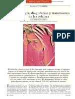 13013472_S300_es cefaleas elsevier.pdf
