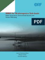 IRBM for Brahmaputra Sub-basin.pdf