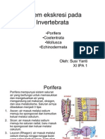 Sistem Ekskresi Pada Invertebrata