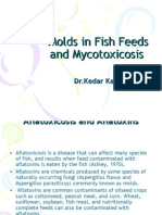 Molds in Fish Feeds and Aflatoxicosis ppt