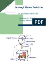 Embriologi Sistem Endokrin Dr Wasilah