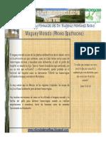 11-maguey morado [Modo de compatibilidad].pdf