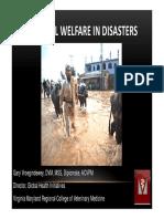 Bienestar Animal y Gestión de Desastres