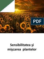 Miscarea Si Sensibilitatea Plantelor