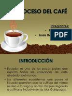 Proceso Del Café Hoy