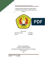 Laporan hasil revisi