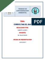 RAI.docx