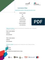 Formato_CV_Postulacion (1)