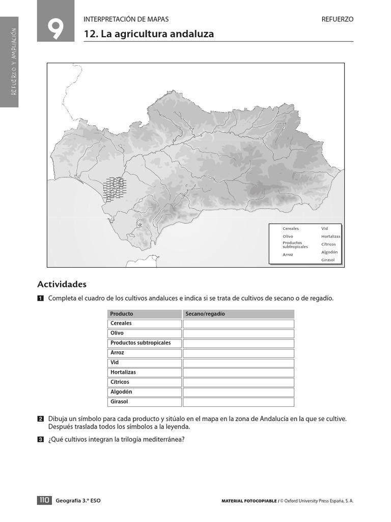 T9-Eso-Oxford pdf
