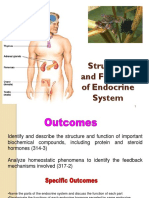 Structure and Function of the Endocrine System
