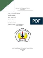 Laporan Pratikum Kimia Fisika i