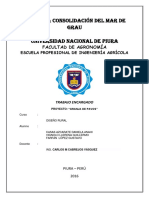 pavos-proyecto-1
