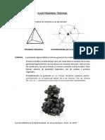 Clase Piramidal Trigona1