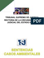 Sentencias Ambientales Jueza Rectora 2015