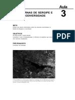18521916022012Seminario_II_Aula_3.pdf