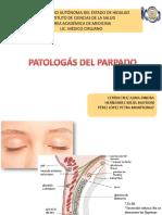 PATOLOGÁS-DEL-PARPADO
