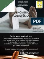 FENÓMENOS CADAVÉRICOS