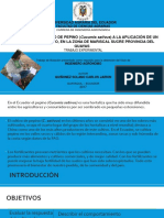 Presentación Tesis Quiñonez Solano
