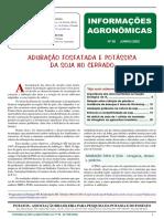 JORNAL 98.pdf