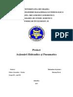 Proiect AHP