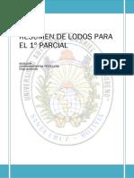 lodos de perforacion.pdf