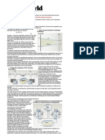 IP-based Communications for Line Current Differential Protection