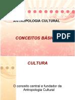 Antropologia conceitos basicos