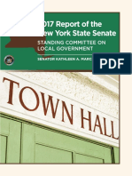 2017 Report of the NYS Senate Standing Committee on Local Government