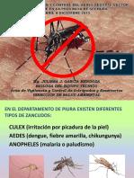Plan Dengue 2015