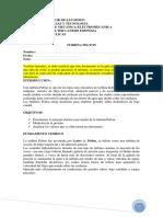 Guia Pelton borrador1.pdf