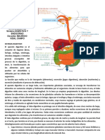 006-Guia Digestivo y Endocrino