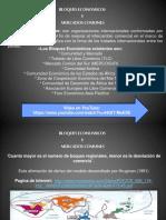 Bloques Económicos.pdf