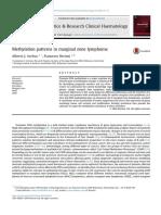 Methylation Patterns in Marginal Zone Lymphoma
