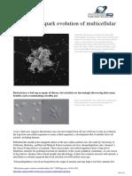 2012 10 Bacteria Evolution Multicellular Life