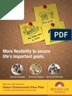 Vision Endowment Plus Plan
