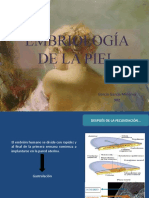 EMBRIOLOGÍA DE LA PIEL